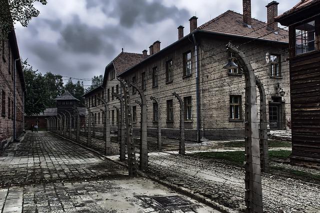 holocaust fakta